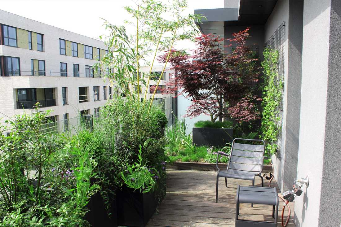 Landscaping of a penthouse terrace in Paris